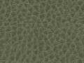 ovation-moss