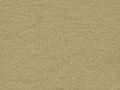 passport-gold-dust