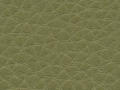 prestige-celadon